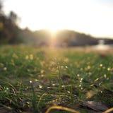 Естественная красота захода солнца Стоковое Изображение RF