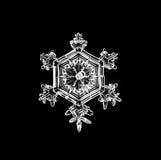 Естественная кристаллическая часть макроса снежинки льда Стоковое Изображение