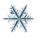 Естественная кристаллическая часть макроса снежинки льда Стоковое Изображение RF