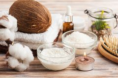 Естественная обработка волос с кокосом Стоковое Изображение