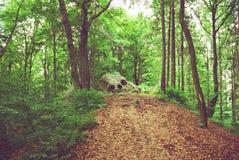 Естественная панорама горной породы Стоковое Изображение RF