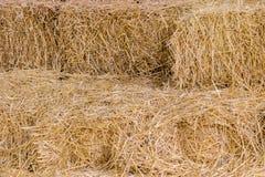 Естественная предпосылка связок желтой соломы Стоковое Фото