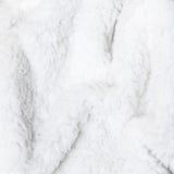Естественная предпосылка меха белых овец Стоковое Фото