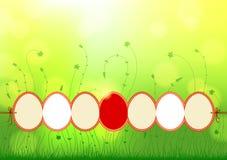 Естественная предпосылка с пасхальными яйцами Стоковая Фотография