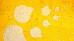 Естественная проштемпелеванная картина листьев Стоковое Фото