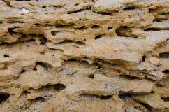 Естественная текстура предпосылки камня моря Стоковые Фото