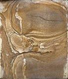 Естественная текстура предпосылки камня сляба гранита Стоковое Фото