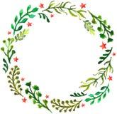 Естественная флористическая предпосылка круга с листьями зеленого цвета и красными звездами Стоковое Изображение