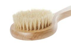 Естественная щетка для мыть Стоковое Фото