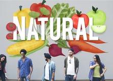 Естественная экологическая консервация засаживает концепцию природы Стоковое Изображение RF