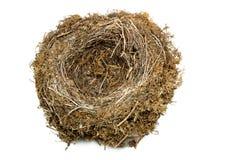 естественное гнездй Стоковая Фотография RF