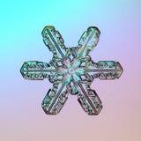Естественное ледяных кристаллов снежинки макроса присутствующее Стоковое Фото