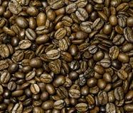 Естественное зерно черного кофе Стоковая Фотография