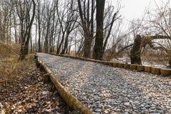 Естественное инженерство - биоинженерия почвы Пример защиты грязной улицы от прилива и от размывания воды Стоковое Фото