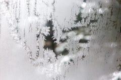 Естественное искусство wintertime стоковые фото