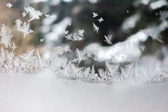 Естественное искусство wintertime стоковое изображение rf
