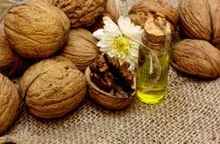 Естественное косметическое масло, эфирные масла, от чокнутых грецких орехов и цветка осени Стоковые Изображения RF