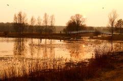 Естественное озеро на заходе солнца. стоковые изображения