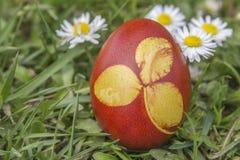 Естественное покрашенное пасхальное яйцо покрашенное с кожами лука 2 Стоковое Изображение