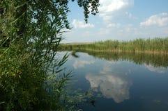 естественное тело воды Стоковая Фотография