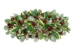 Естественное украшение флоры зимы Стоковая Фотография