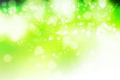 Естественное bokeh леса стоковая фотография