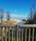 Естественное parc на пляже Стоковая Фотография RF