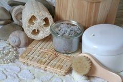 естественное spa2 Стоковая Фотография RF