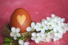 Естественно покрашенное пасхальное яйцо в гнезде стоковая фотография
