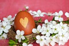 Естественно покрашенное пасхальное яйцо в гнезде стоковые фотографии rf