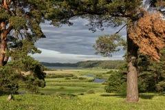 Естественные ландшафты в историческом месте Pushkinskiye окровавленное Пскова, России Стоковое Фото