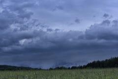 Естественные ландшафты в историческом месте Pushkinskiye окровавленное Пскова, России Стоковое фото RF