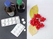 Естественные витамины или таблетки Ягоды красного зрелого schisandra или целебных подготовок Стоковые Фото