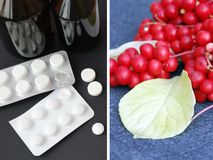Естественные витамины и таблетки медицины дилемма Ягоды красного зрелого schisandra или целебных подготовок Стоковое фото RF
