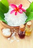 Естественные ингридиенты курортов для заботы кожи Стоковые Фото