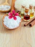 Естественные ингридиенты курортов для заботы кожи Стоковые Фотографии RF