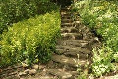 Естественные каменные лестницы стоковое изображение
