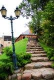 Естественные каменные шаги Стоковые Фото