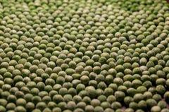 Естественные картины - зеленый горох стоковое изображение rf