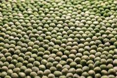 Естественные картины - зеленый горох стоковое фото