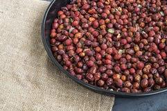 Естественные картины плода шиповника высушенные на деревянных полах, изображения плода шиповника высушенные для того чтобы сделат Стоковые Фото