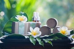 Естественные косметики на красивой тропической предпосылке Стоковое фото RF
