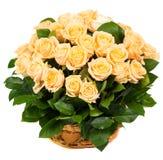 Естественные красивые розы в корзине Стоковое Изображение