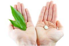 Естественные медицины и пилюльки в руках  Стоковое фото RF