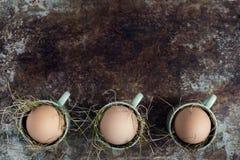 Естественные пасхальные яйца в зеленых чашках эспрессо, счастливой концепции пасхи, ретро предпосылке пасхи Стоковое фото RF