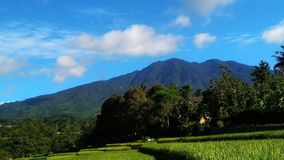 Естественные пейзаж в горах на солнечном утре и соответствующий для обоев стоковые изображения rf