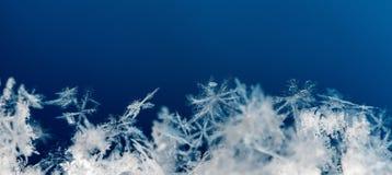 Естественные снежинки на снеге, снеге стоковое изображение