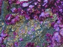 Естественные формы Минералы и самоцветные текстуры и предпосылки камней Стоковая Фотография