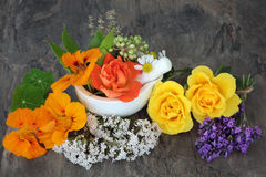 Естественные цветки используемые в альтернативной фитотерапии стоковое изображение rf