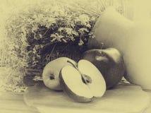 Естественные эко-продукты Стоковые Фотографии RF
